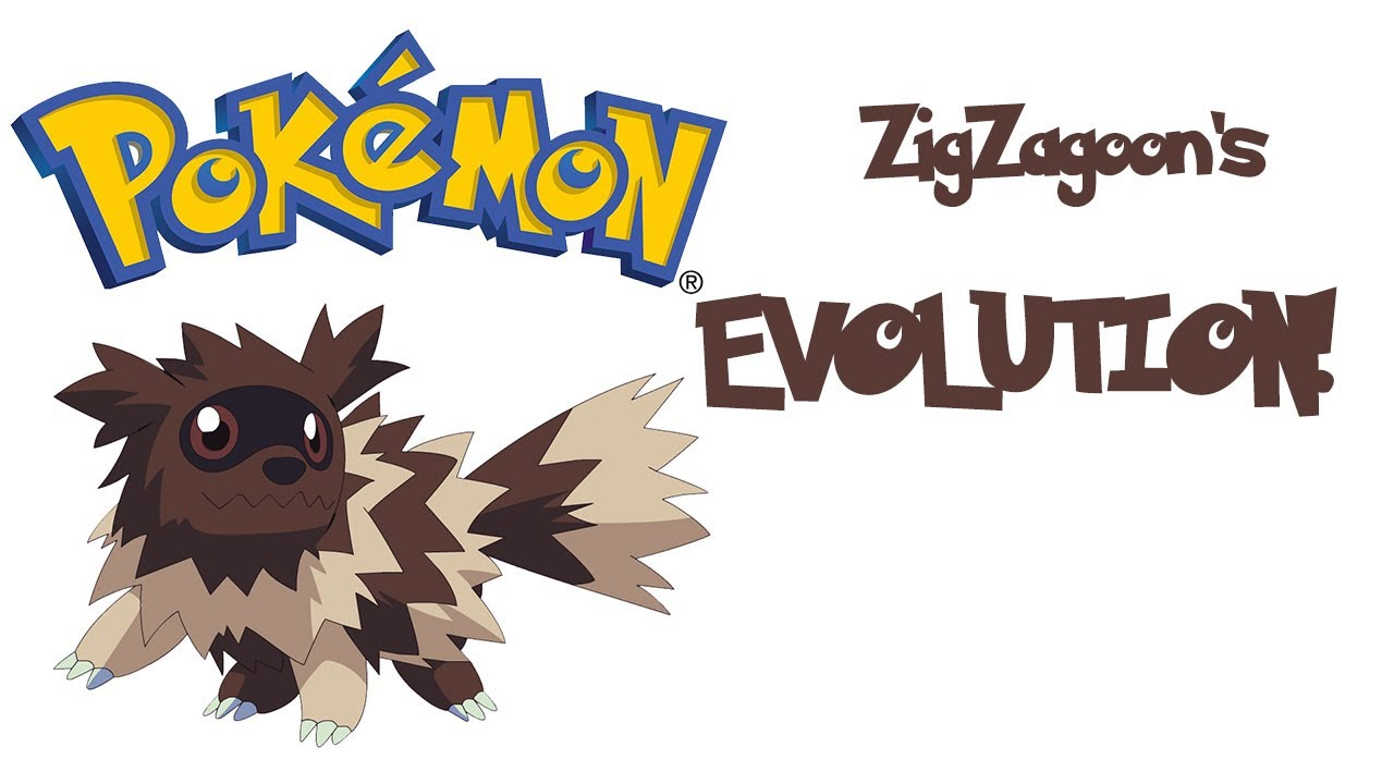 ZigZagoon's Evolution!! - YouTube