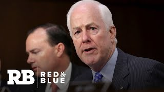 Crowded field of Democrats compete to take on Texas Sen. John Cornyn