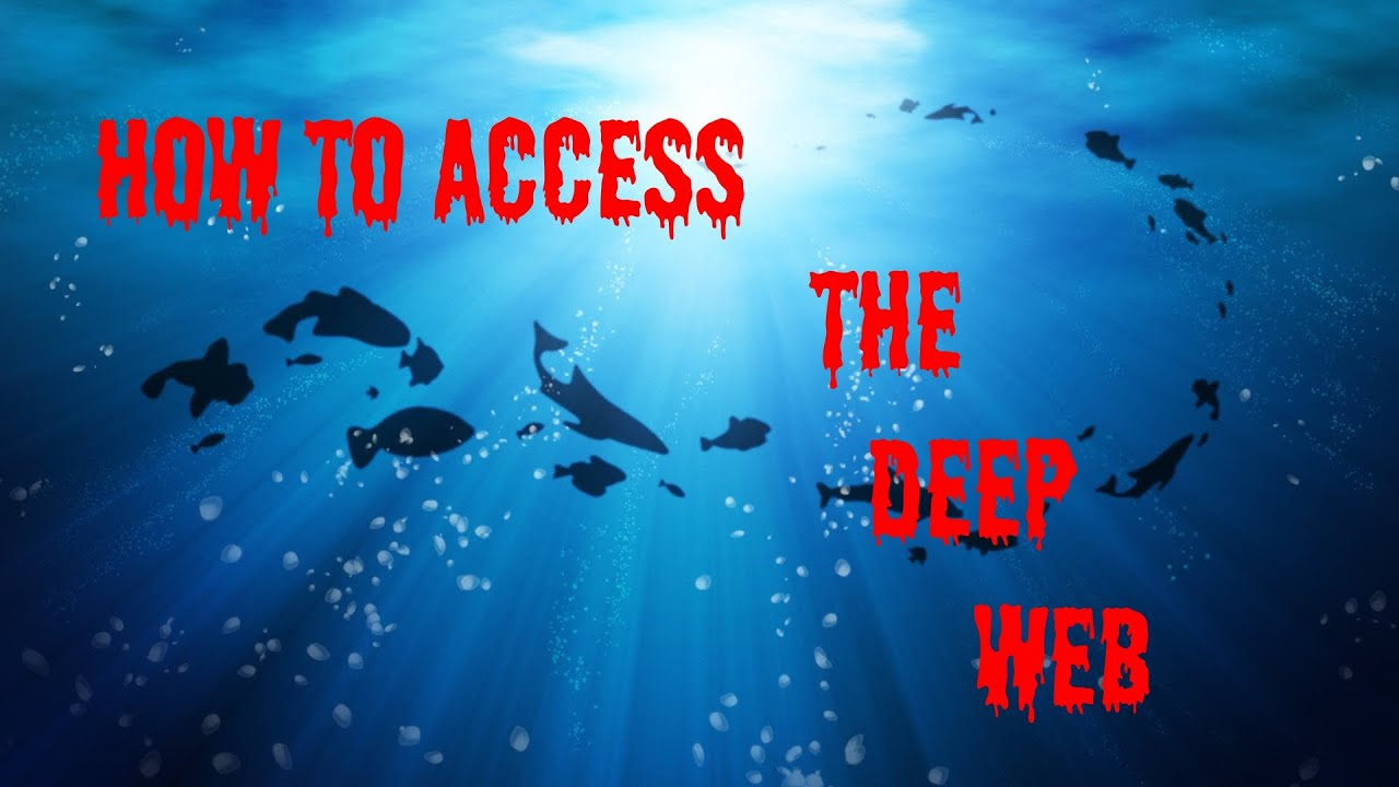 How To Access The Deep Web *educational Use Only*