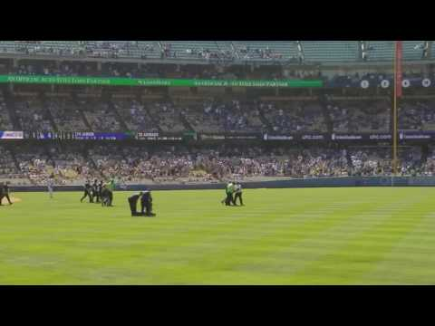 DODGER'S game animals rights activist run on the field...7/3/16
