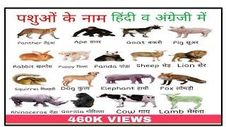 Animals Name in English and Hindi. पशुओं के नाम अंग्रेजी व हिन्दी में .