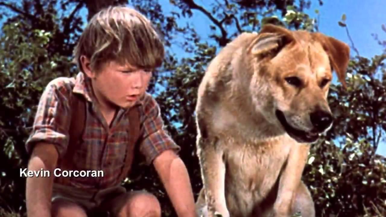 Download Jan 1, 1967 2 HD 1080p apple