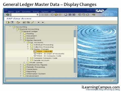 SAP ERP FI (Finance) Display Changes General Ledger Master Account
