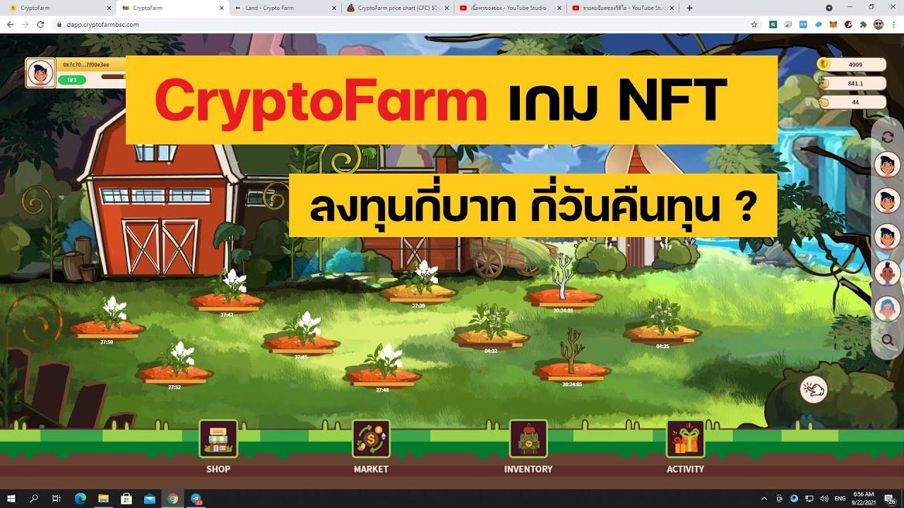 CryptoFarm : เกมปลูกผักเล่นแล้วได้เงิน ลงทุนเท่าไหร่ คืนทุนกี่วัน