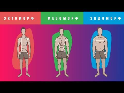 Как НА САМОМ ДЕЛЕ Нужно Тренироваться и Питаться Эктоморфу, Эндоморфу и Мезоморфу (Разница есть)