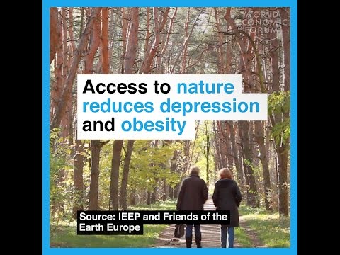 Acces to nature reduces depression and obesity