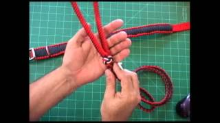 The Paracord Weaver: Combination Collar and Long Lead Leash