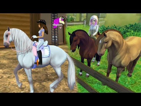 New Horse !!! Buying Lusitano Horse Star Stable Online Horse Let's Play Game
