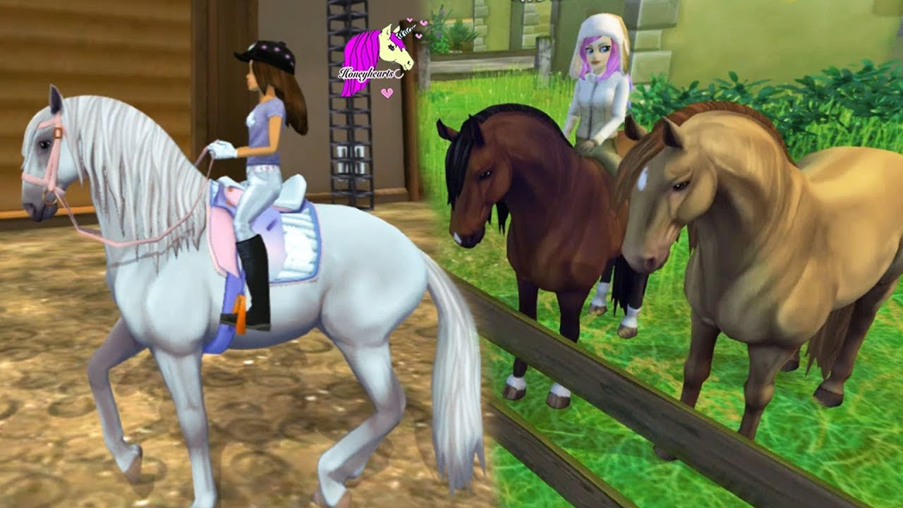 New Horse Buying Lusitano Horse Star Stable Online Horse Let S