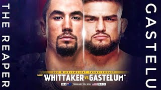Robert Whittaker Vs Kelvin Gastelum | UFC 234 | Promo