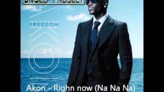 Akon - Right Now (Na Na Na) (UniSelf Remix)