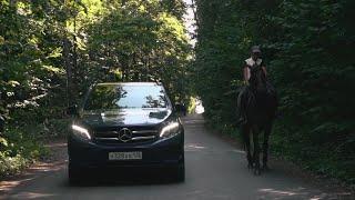 Mercedes GLE 2017 (б/у) // Лиса Рулит