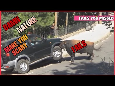 Fails you missed ,Damn Scary Nature #Failsyoumissed
