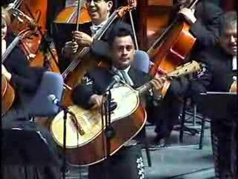 V Is For Violin VIOLIN HUAPANGO MARIAC...
