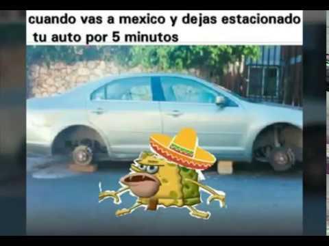 Todos los memes de ESPONJA GAR. :v