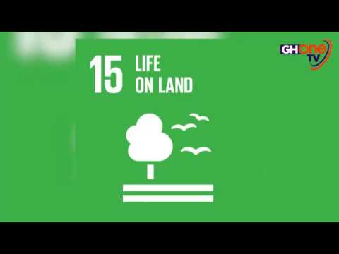 STATE OF ENVIRONMENT — Ghana Still Continues To Grapple With Poor Sanitation