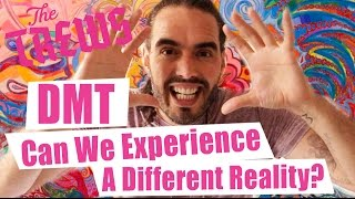 DMT - Can We Experience A Different Reality? Russell Brand The Trews (E360)