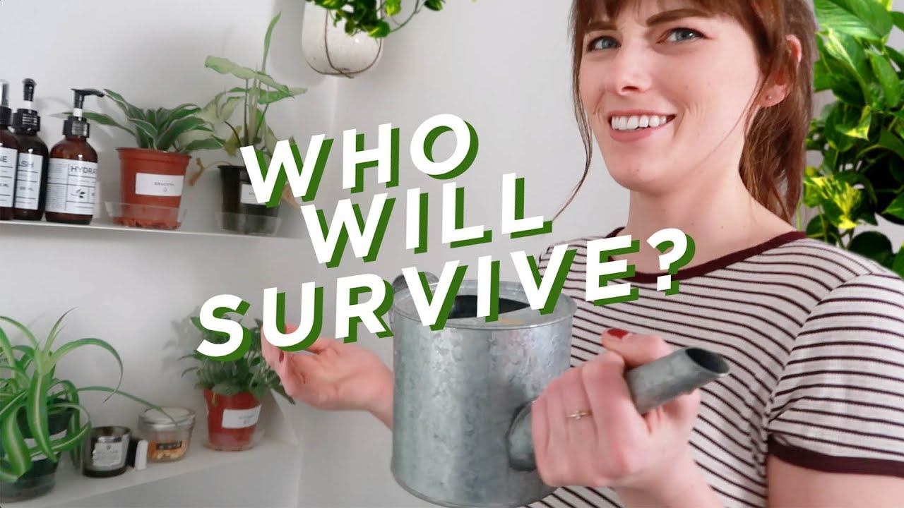 TESTING PLANTS THAT SURVIVE IN ZERO LIGHT!?