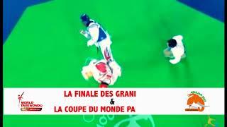 Grand Prix & Coupe du Monde de Taekwondo par équipes - 2017 / SPot 1
