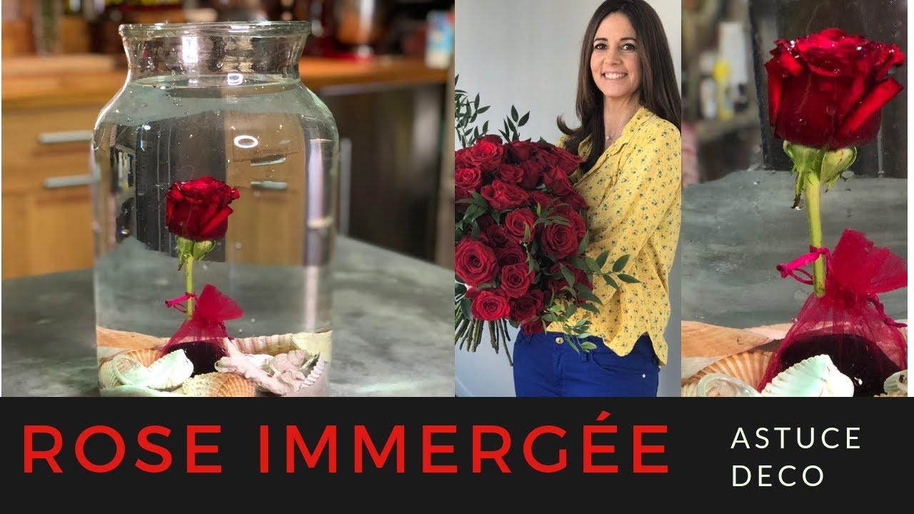100 Remarquable Conseils Comment Lester Des Fleurs Dans Un Vase