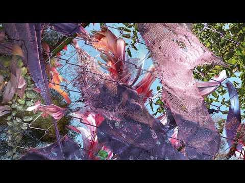 Kingdom - Down 4 Whatever (feat. SZA) [AUDIO]