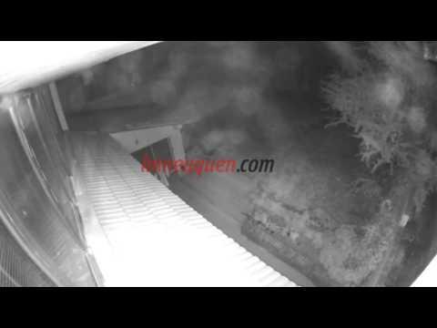 El llamado de un vecino desactivó un robo a una casa
