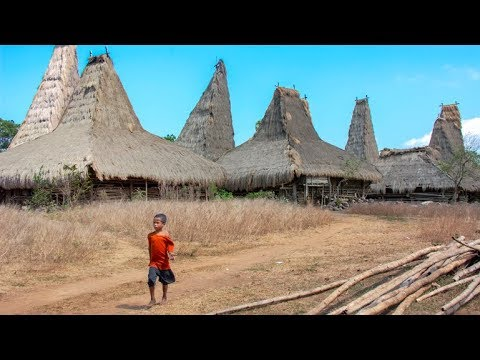 A tour on the island of Sumba (Indonesia - 2015)