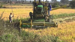PADDY-RICE-CUTTING MACHINE-CROP HARVESTING