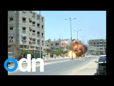Were War Crimes Committed In Gaza?