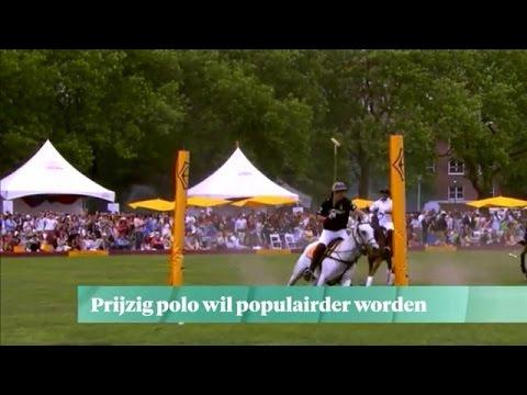 Prijzig polo wil populair worden - Z TODAY