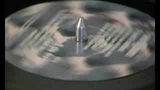 Century Falls - Secret Codes - Slo Dive
