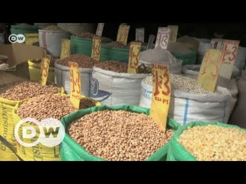 Zimbabwean seed banks for food security | DW English