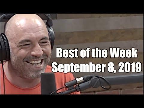 Best of the Week - September 8, 2019 - Joe Rogan Experience