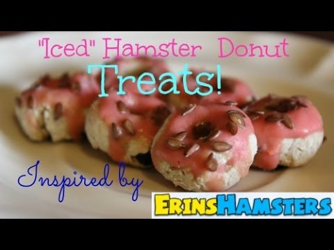 {DIY} How to Make Iced Hamster Donuts!