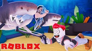 THE KILLER HAI WILL EAT YOU IN ROBLOX!