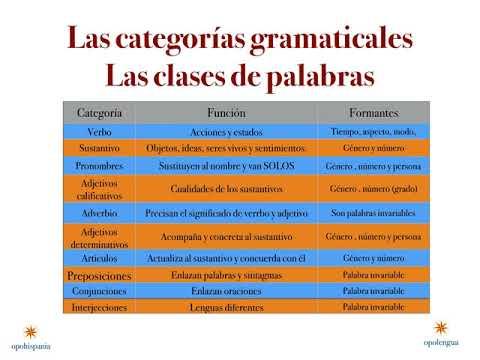 La Estructura De La Palabra Las Categorías Gramaticales 2º Bto