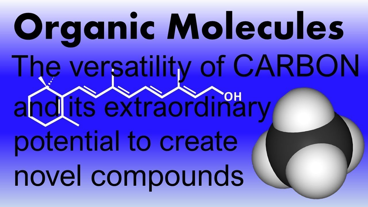 Organic Molecules The Versatility Of Carbon The Tremendous Variety