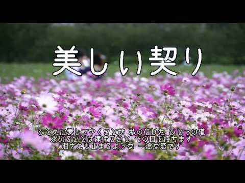 美しい契り ( 片平なぎさ ) cover / 歌:にゃんぱ