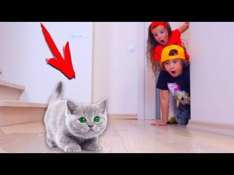 Аминка и Камиль СПАСАЮТ КОТЕНКА!