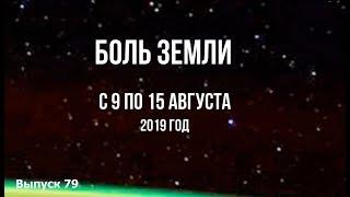 Катаклизмы за неделю с 9 по 15 августа 2019 г