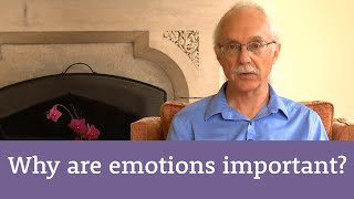 Why are emotions important?