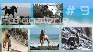 FOTOGALERIE #10 -Fuerteventura REAL PICS :D
