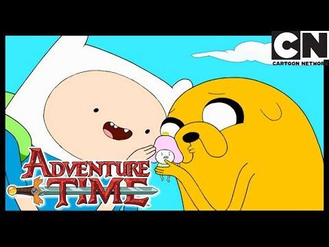 Время приключений | Конкурс красоты | Cartoon Network