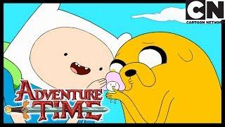 Время приключений   Конкурс красоты   Cartoon Network