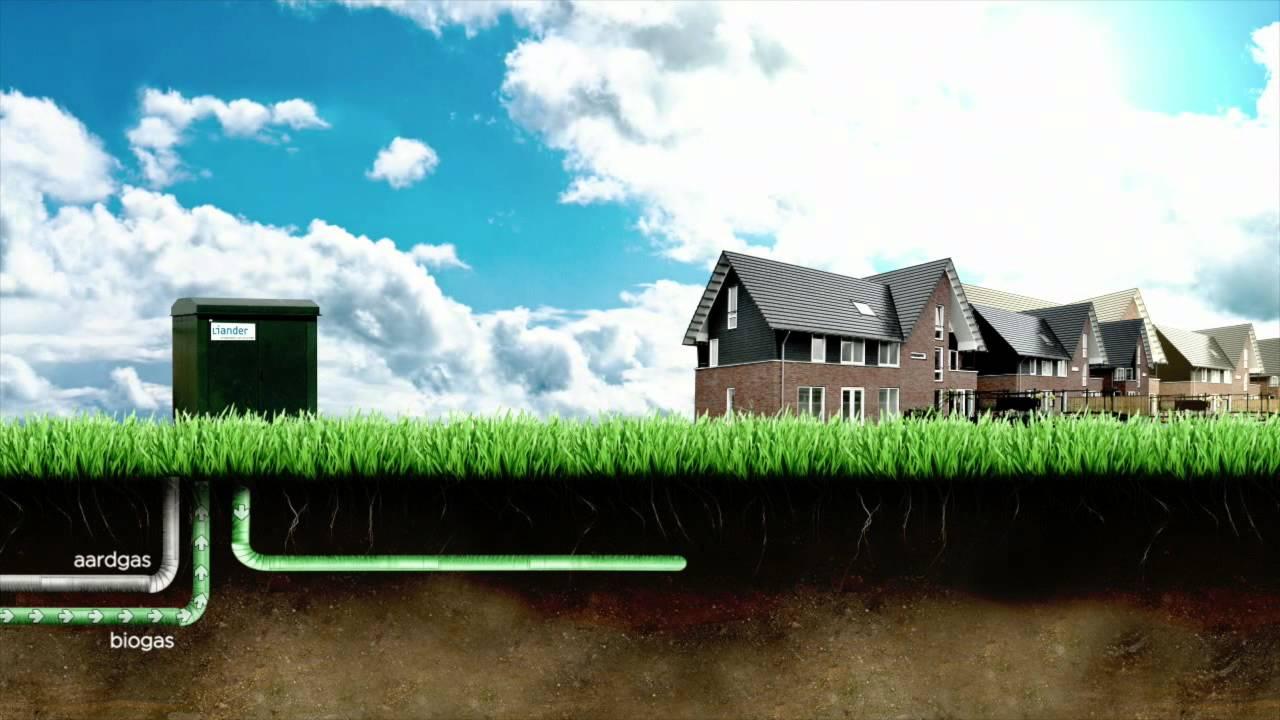 Het BioNet - verwarmen op biogas met de multigas cv-ketel