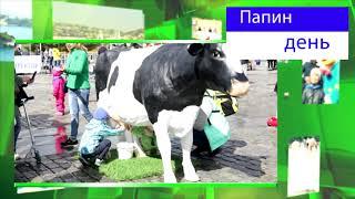 видео Бест-Новострой