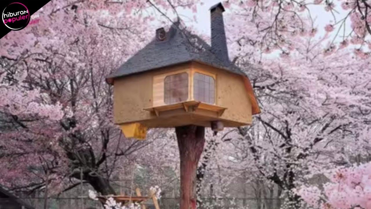 10 Rumah Pohon Paling Unik Di Dunia Youtube