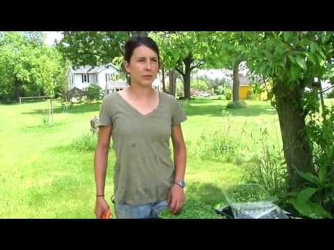 ELFCO TV 30: Foodshed Farm