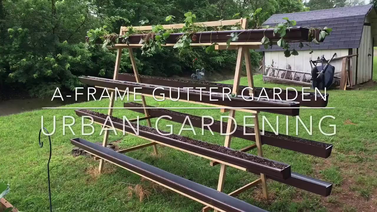 A Frame Gutter Garden Urban Gardening Video Youtube