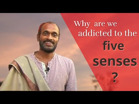 Know how to become free from the addiction of the 5 senses; pratyahara in Yoga